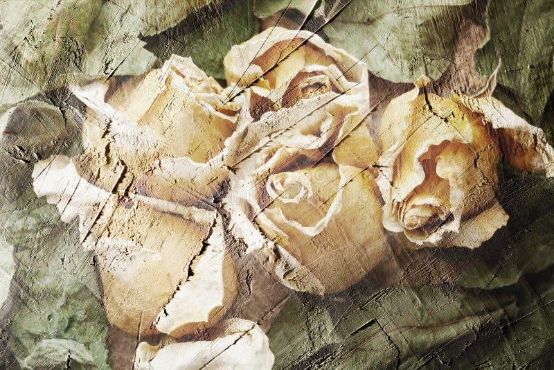 Rosas e folhas brancas do verde fotos de stock royalty free