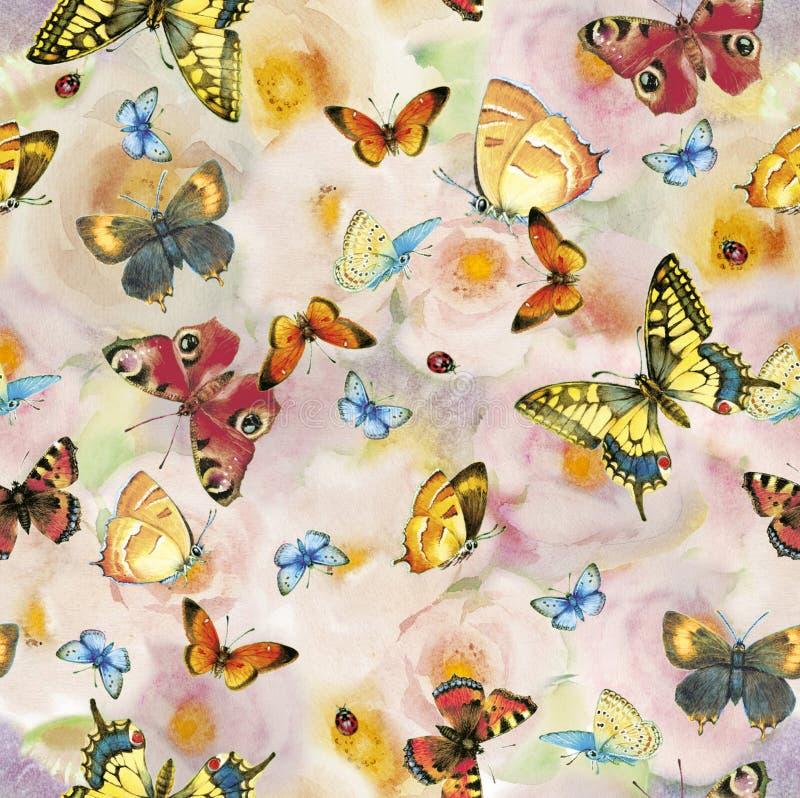 Rosas e teste padrão de borboleta ilustração do vetor