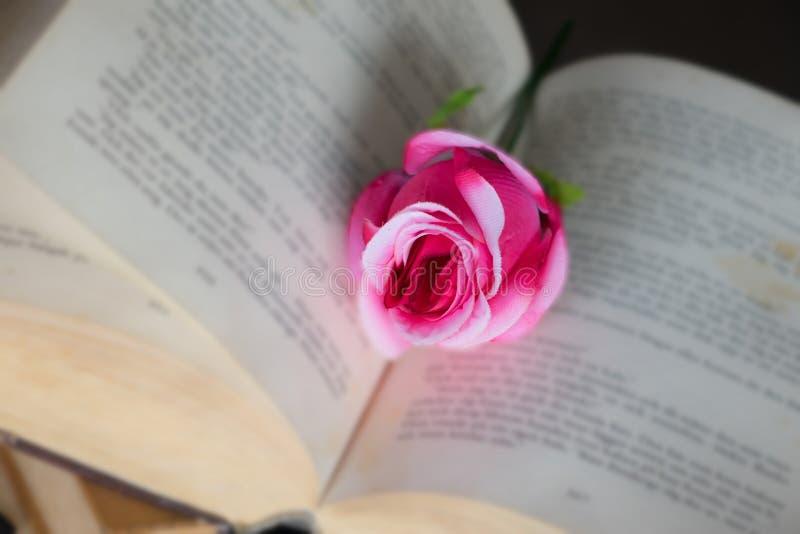 Rosas em livros imagem de stock royalty free