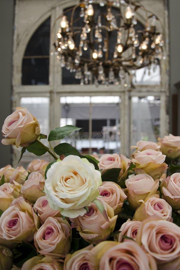 Rosas em uma construção velha imagens de stock royalty free