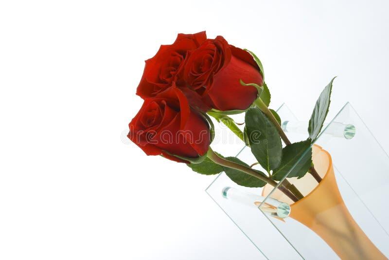 Rosas en el florero fotografía de archivo libre de regalías
