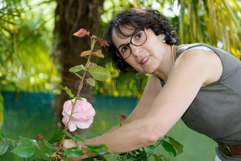 Rosas encantadores do corte do jardineiro da mulher foto de stock royalty free