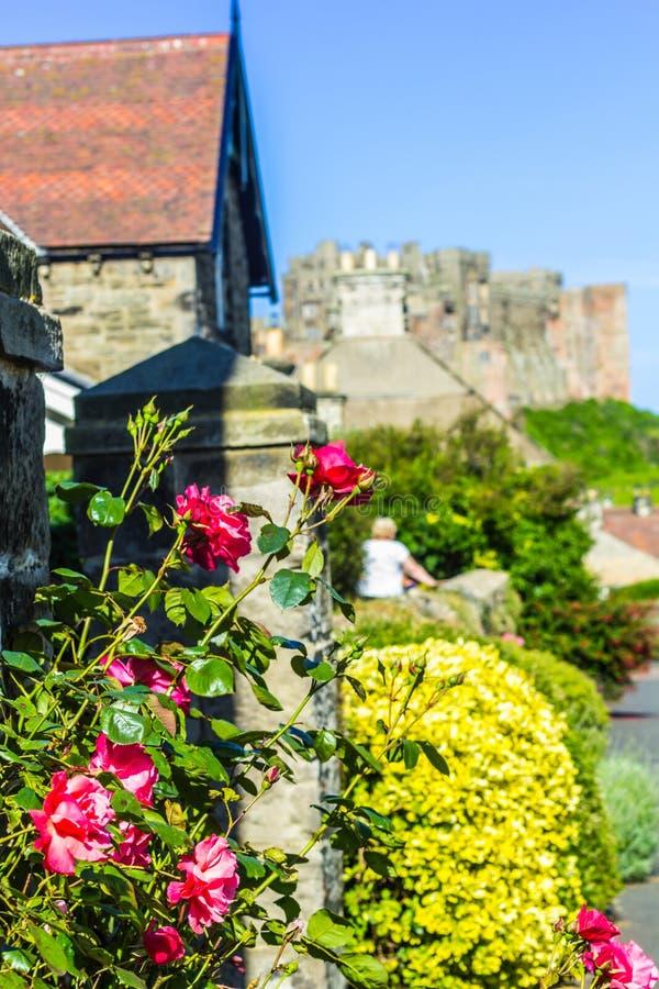 Rosas hermosas, rojas que adornan el exterior de la casa foto de archivo