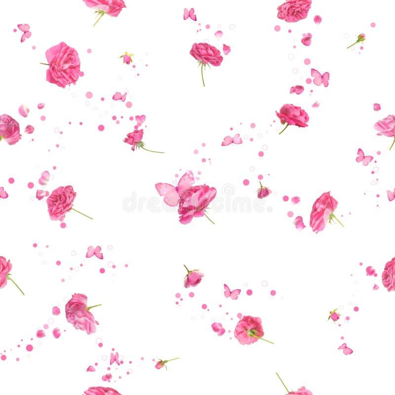Rosas inconsútiles en color de rosa fotos de archivo libres de regalías