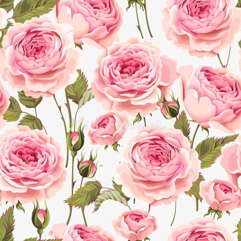 Rosas inglesas inconsútiles libre illustration