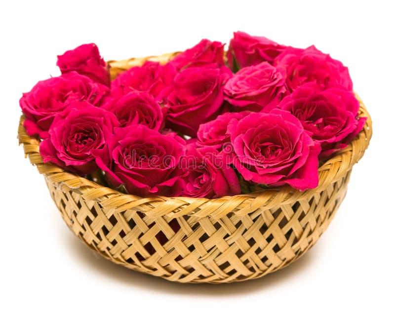 Rosas magentas na cesta imagens de stock