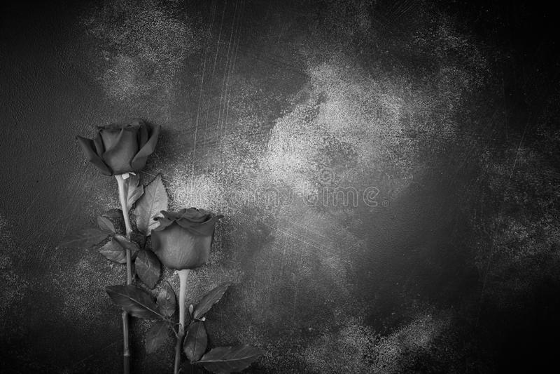Rosas mentem sobre um fundo texturizado Espaço para o seu texto Imagem preta e branca fotos de stock