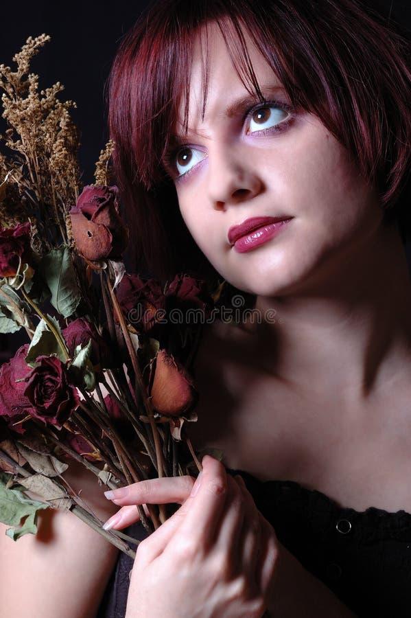 Rosas muertas foto de archivo libre de regalías