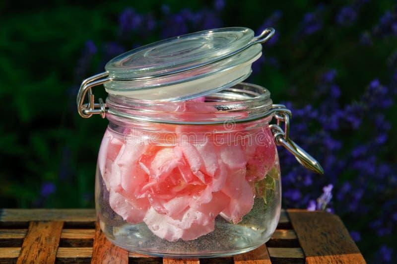 Rosas na água foto de stock royalty free