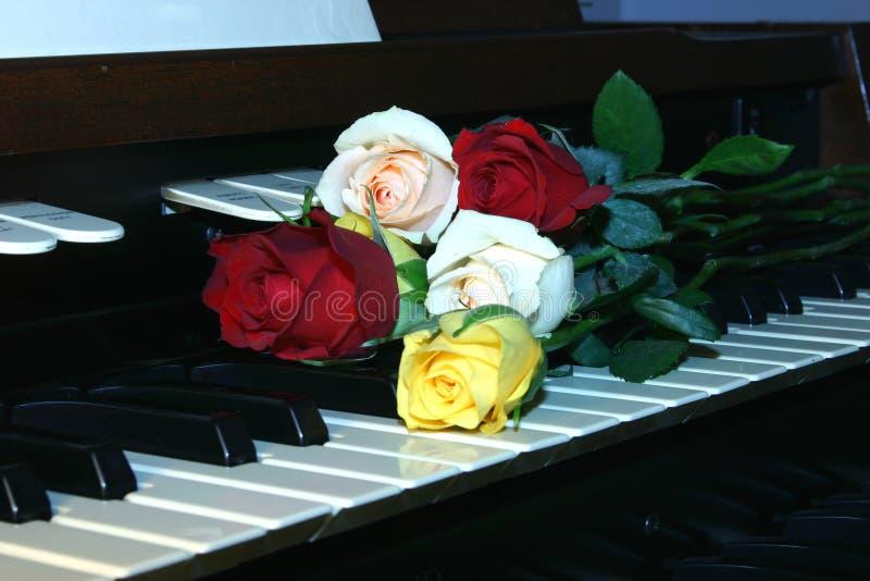 Rosas no órgão fotos de stock royalty free