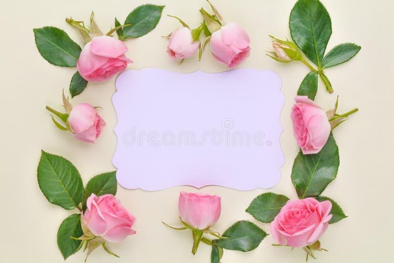 Rosas no cartão de papel imagens de stock royalty free