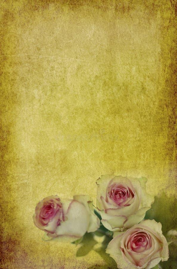 Rosas no papel velho ilustração stock