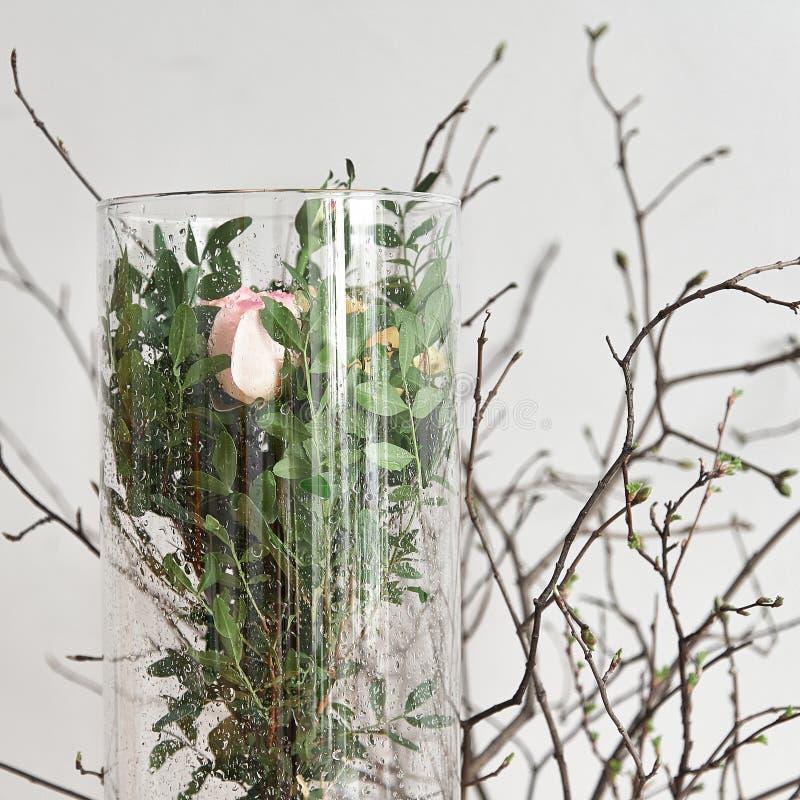 Rosas nos ramos 2 do vidro e da mola foto de stock royalty free