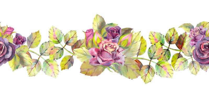 Rosas oscuras, brotes, hojas Repetici?n de la frontera horizontal del verano Acuarela floral Composiciones de la acuarela para el foto de archivo