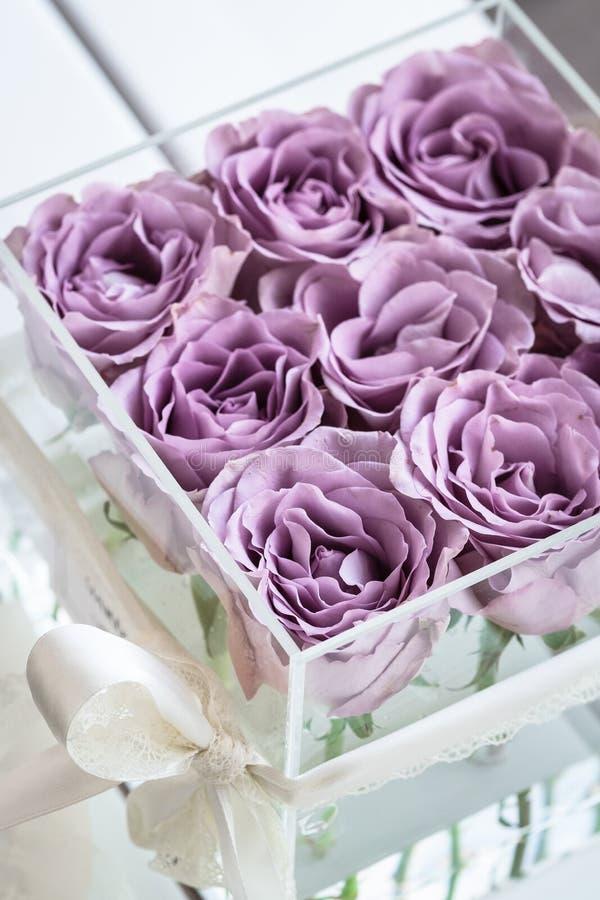 Rosas púrpuras en colores pastel en caja de acrílico clara fotografía de archivo libre de regalías