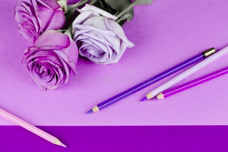 Rosas, papel, lápis do rosa e roxo foto de stock