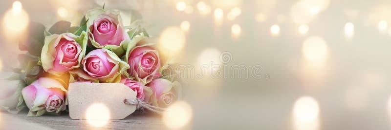 Rosas para o dia de mães imagens de stock