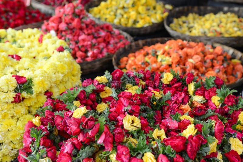 Rosas para a venda imagens de stock royalty free