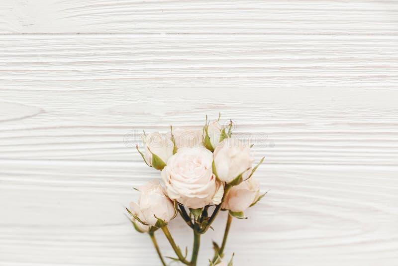 Rosas pequenas cor-de-rosa no fundo de madeira, configuração lisa com espaço para t imagem de stock