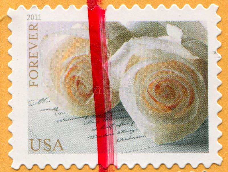 Rosas, postal foto de archivo