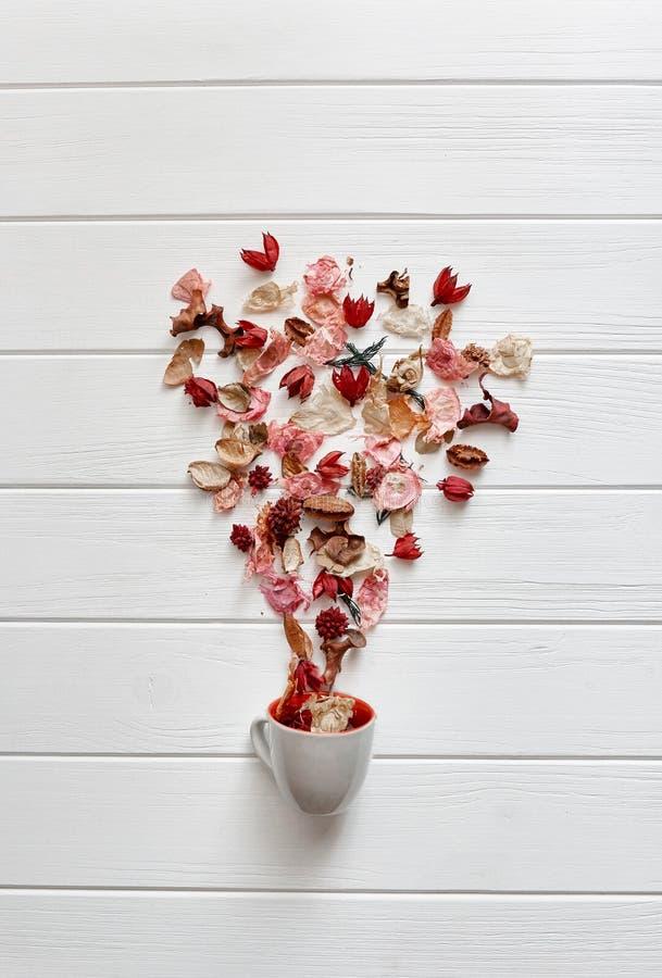Rosas presionadas en una taza del coffe en un fondo blanco imagen de archivo