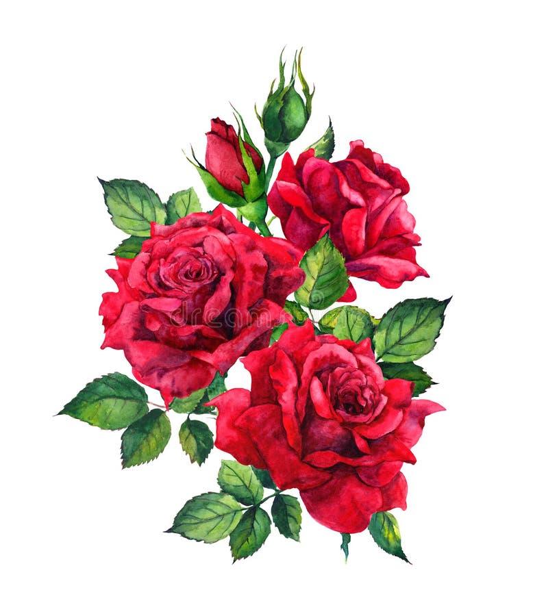Rosas rojas Bosquejo de la acuarela stock de ilustración