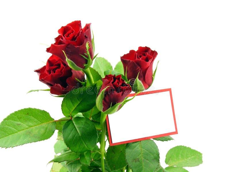 Rosas rojas con la tarjeta del regalo imagen de archivo libre de regalías
