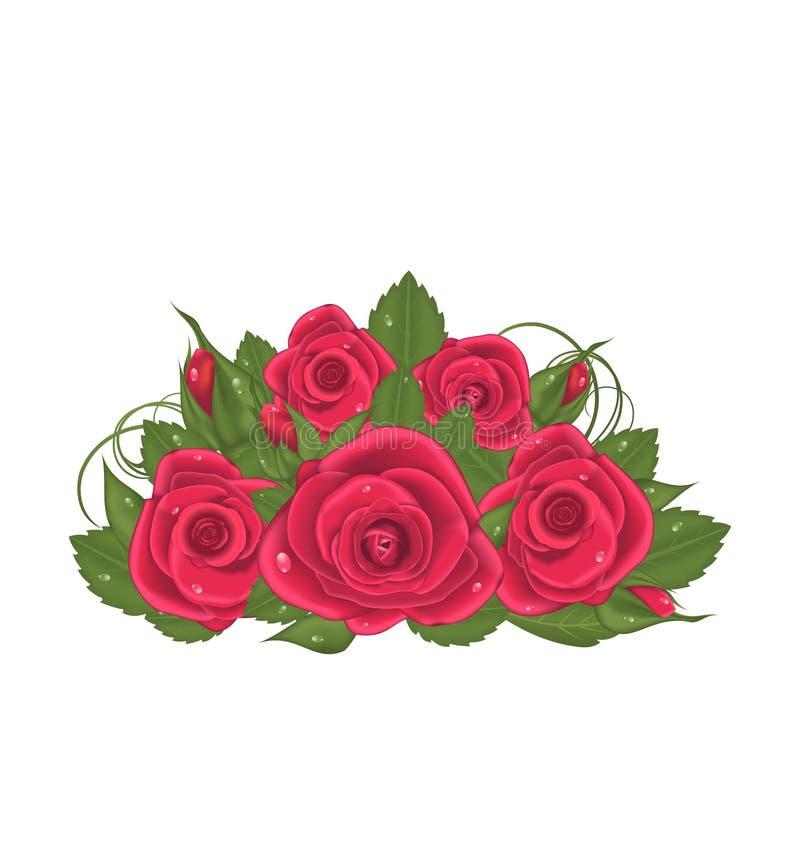 Rosas rojas del ramo aisladas en el fondo blanco stock de ilustración