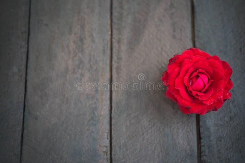 Rosas rojas en el fondo de madera, vintage retro, fotos de archivo libres de regalías