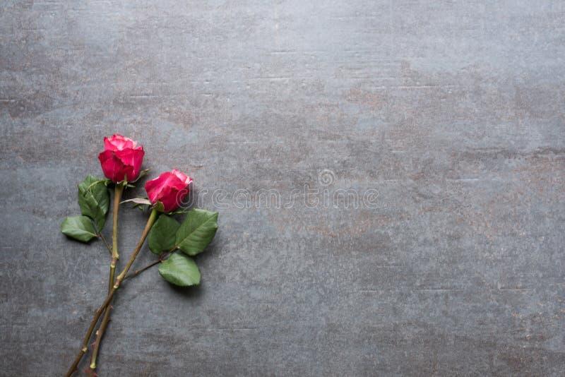 Rosas rojas en una placa de piedra gris foto de archivo libre de regalías