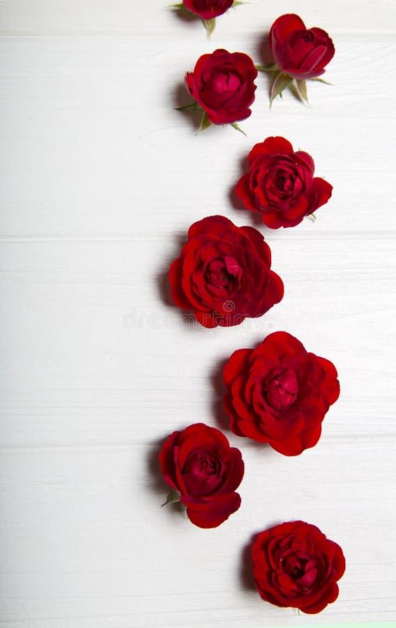 Rosas rojas en una tabla de madera blanca Modelo de flor fotos de archivo