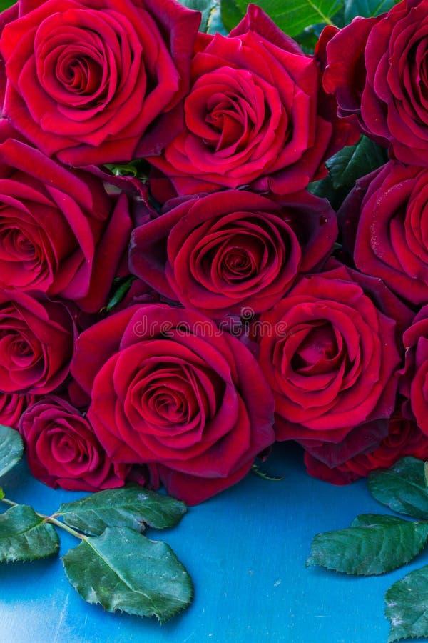 Rosas rojas frescas en la tabla azul fotografía de archivo