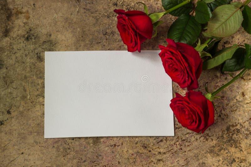 Rosas rojas, pétalos y documento vacío blanco sobre un fondo de madera fotos de archivo