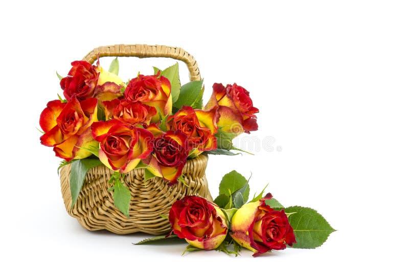 Rosas rojas y amarillas foto de archivo