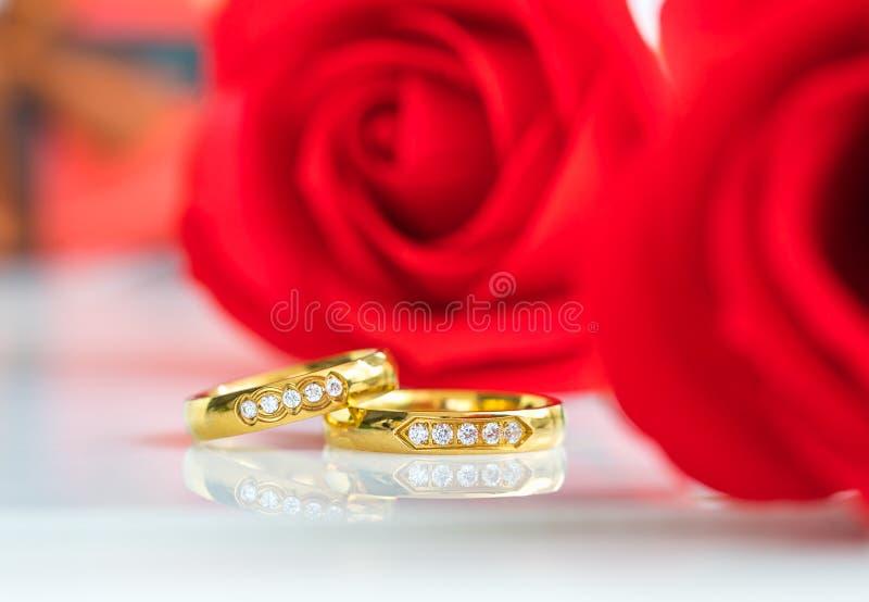 Rosas rojas y anillos de oro en blanco imagenes de archivo