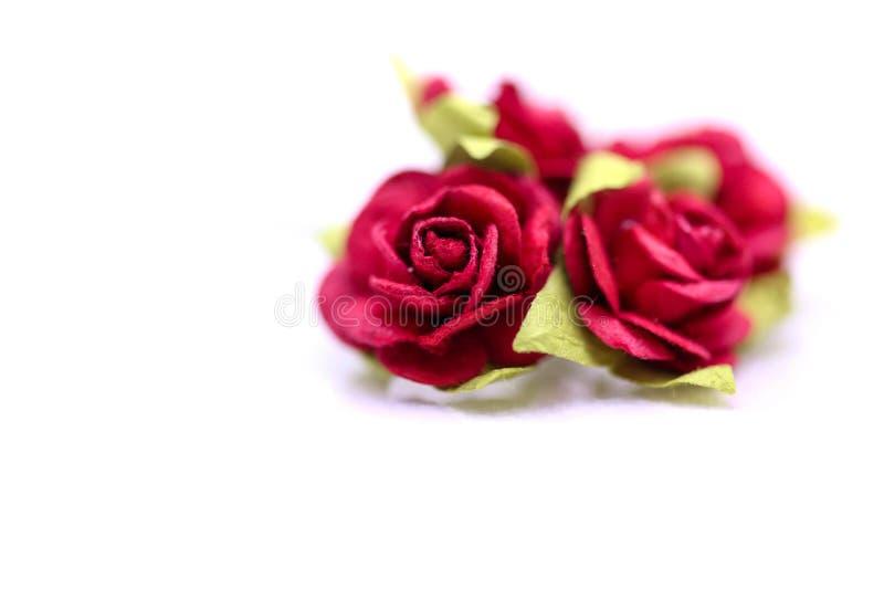 Rosas rojas y rosas blancas en el backgroud blanco, amor del día de San Valentín fotografía de archivo libre de regalías