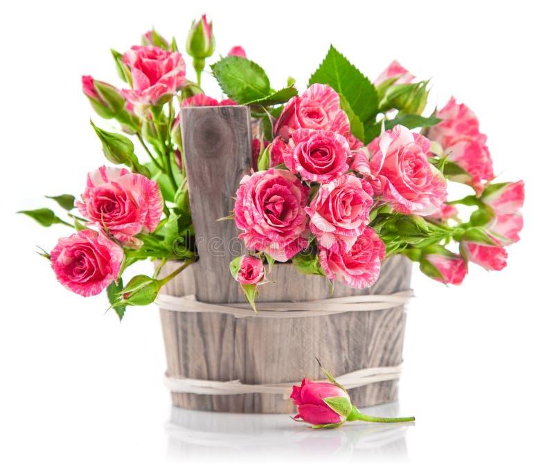 Rosas rosadas del manojo en cubo de madera imagen de archivo libre de regalías