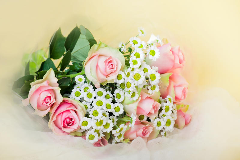 Rosas rosadas del ramo fotos de archivo