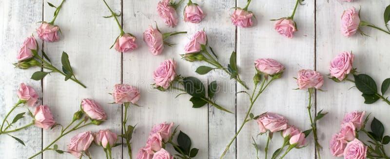 Rosas rosadas en fondo de madera fotografía de archivo libre de regalías
