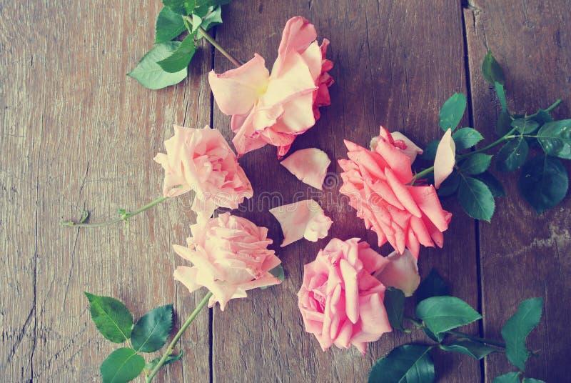 Rosas rosadas en la tabla de madera rústica; retro, filtrado imágenes de archivo libres de regalías