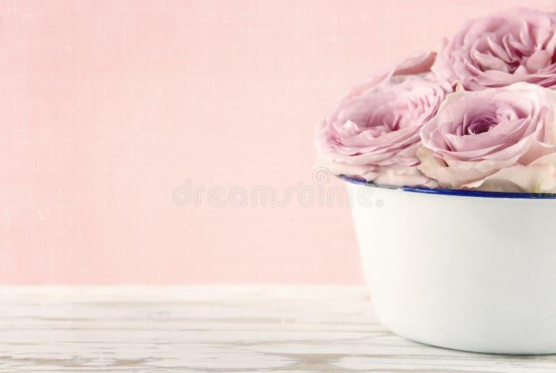 Rosas rosadas en un florero viejo blanco imagen de archivo libre de regalías