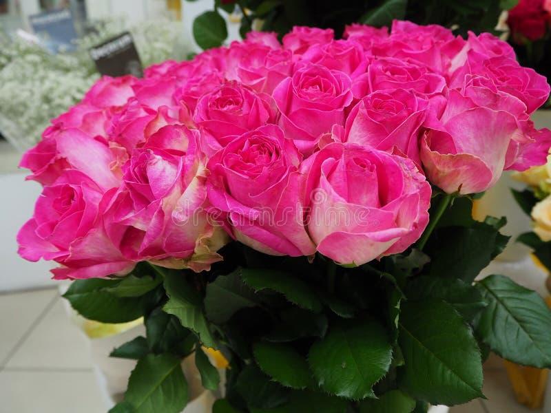 Rosas rosadas en una tienda fotografía de archivo