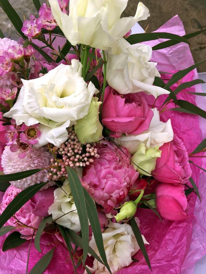 Rosas rosadas, eustoma blanco, rosas rosadas y Chamelauciumin rosado un ramo de flores frescas en un fondo ligero imágenes de archivo libres de regalías