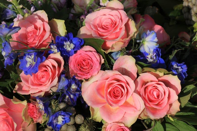 Rosas rosadas y espuela de caballero azul imagen de archivo libre de regalías