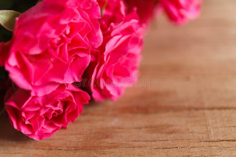 Rosas roxas na mesa de madeira imagem de stock