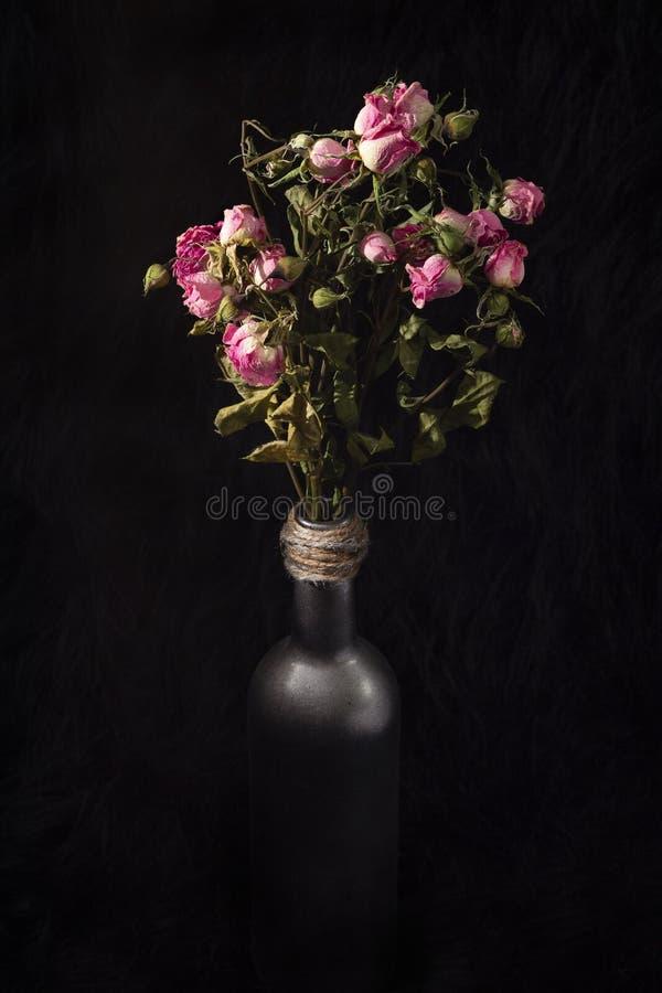 Rosas secadas imagen de archivo libre de regalías