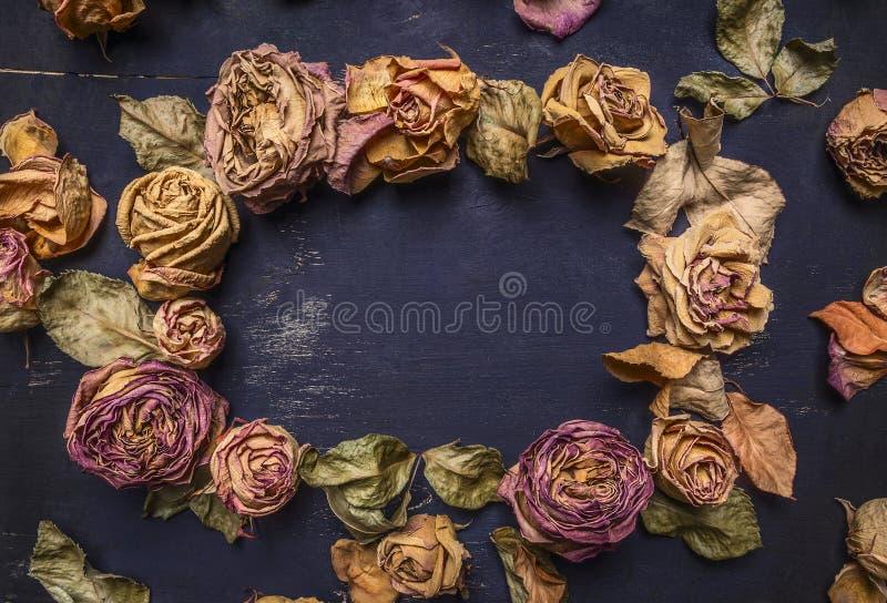 Rosas secadas com pétalas, quadro alinhado com espaço para o fim rústico de madeira da opinião superior do fundo do texto acima foto de stock royalty free