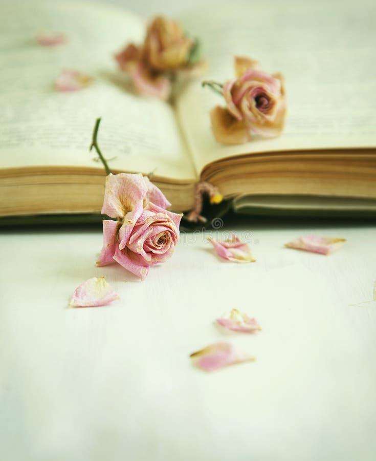 Rosas secas e livro velho imagens de stock