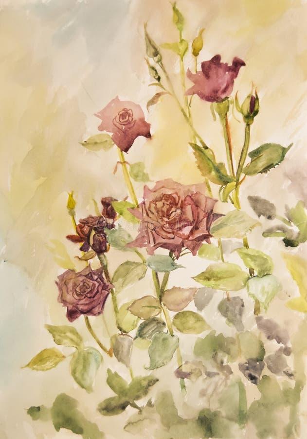 Rosas vermelhas bonitas no jardim pintado na aquarela foto de stock royalty free