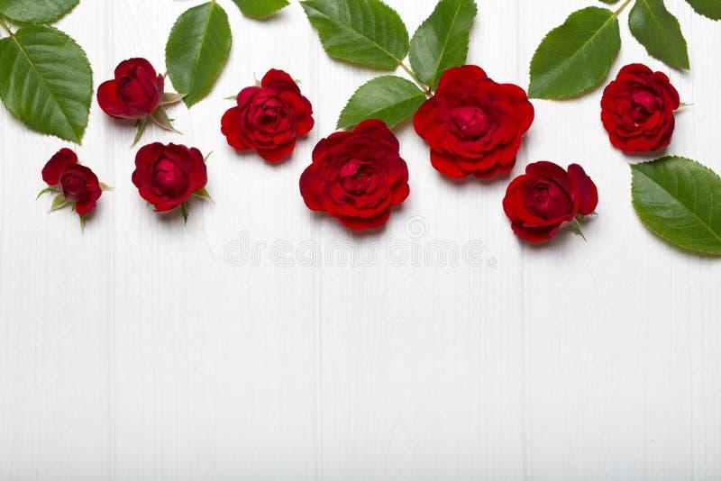 Rosas vermelhas e folhas do verde em uma tabela de madeira branca Teste padrão floral do vintage Vista de acima Teste padrão de f imagens de stock